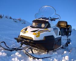 Снегоходы Stels