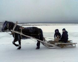 Люди едут в санях по льду