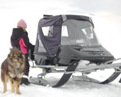 Сани с тентом, собака и девочка