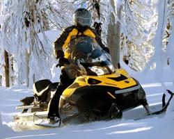 Мужчина на черно-желтом снегоходе в снежном лесу