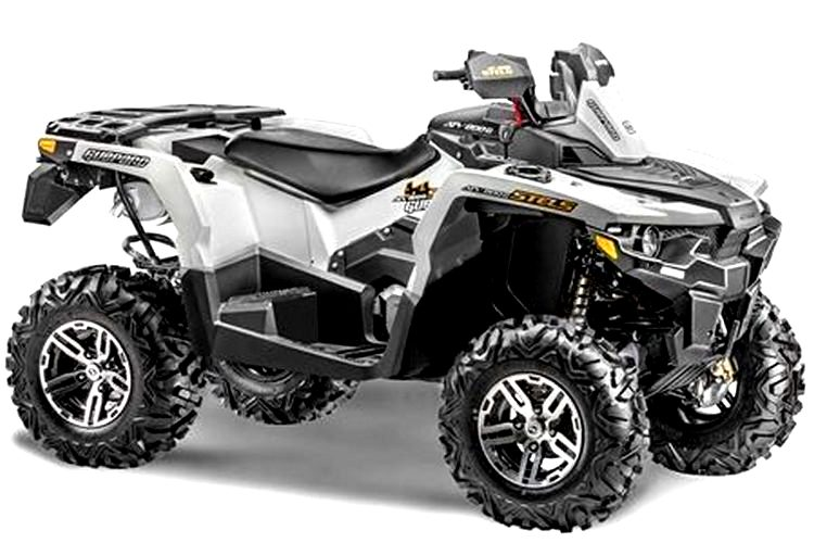 квадроцикл стелс, Stels ATV 650 Guepard ST